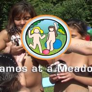 Games at a Meadow