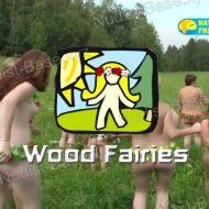 Wood Fairies