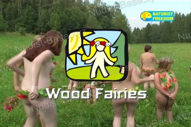 Screenshot Wood Fairies