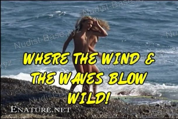 Snapshot of Where the Wind and the Waves Blow Wild!