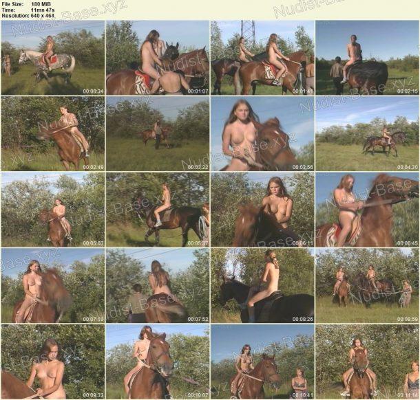 Holy nature horses - BartDude frame