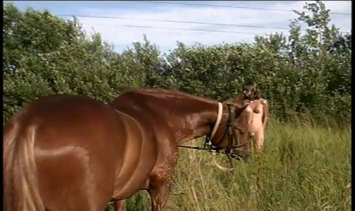 Enature Videos When Horses and Naturists Meet - Naturism in Russia 2000 Series - 1